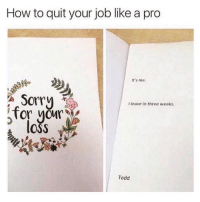 Funny, Memes, and Sorry: How to quit your job like a pro  It's me.  8  Sorry  for yo  s loss  I leave in three weeks  Todd SarcasmOnly