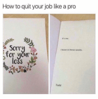 Memes, Sorry, and How To: How to quit your job like a pro  It's me  Sorry  for voMY  loss  I leave in three weeks.  Todd Dm to a friend who would do this 😆😂