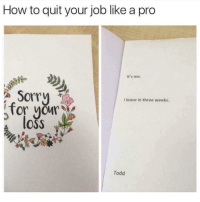 Sorry, How To, and Pro: How to quit your job like a pro  It's me  Sorry  I leave in three weeks.  for yur  loss  Todd Me irl