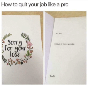 Me irl by pinkpanther4719 MORE MEMES: How to quit your job like a pro  It's me  Sorry  I leave in three weeks.  for yur  loss  Todd Me irl by pinkpanther4719 MORE MEMES