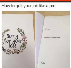 Sorry, How To, and Pro: How to quit your job like a pro  It's me.  Sorry  for your  loss  Tleave in three weeks  Todd