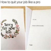 Memes, Sorry, and How To: How to quit your job like a pro  t's me  Sorry  I leave in three weeks.  loss  Todd