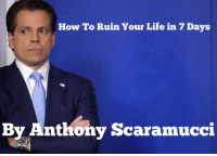Life, Soon..., and Best: How To Ruin Your Life in 7 Days  By Anthony Scaramucci <p>Be sure to pre-order your copies of this soon to be best seller!</p>