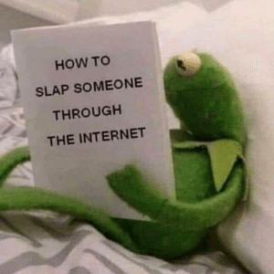 Internet, Memes, and How To: HOW TO  SLAP SOMEONE  THROUGH  THE INTERNET