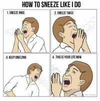 Life, Memes, and How To: HOW TO SNEEZE LIKE I DO  1. SNEEZE ONCE  2. SNEEZE TWICE  3. KEEP SNEEZING  4. THIS IS YOUR LIFE NOVW  The Oatmeal 5. Embrace the godless anarchy of your face