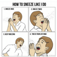 Life, How To, and Dank Memes: HOW TO SNEEZE LIKEIDO  1. SNEEZE ONCE  2. SNEEZE TWICE  3. KEEP SNEEZING  4. THIS IS YOUR LIFE NOW  The Oatmeal