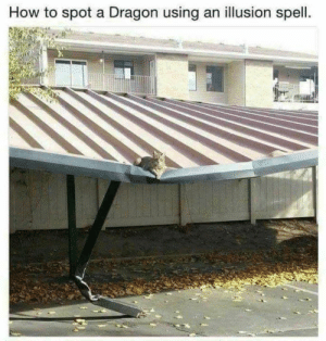 Memes, How To, and 🤖: How to spot a Dragon using an illusion spell.