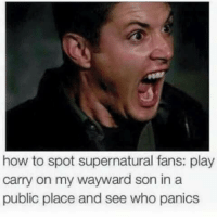 - Not Moose: how to spot supernatural fans: play  carry on my wayward son in a  public place and see who panics - Not Moose