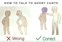 Cuntology: HOW TO TALK TO SHORT CUNTS  o 0  X Wrong  Correct Cuntology