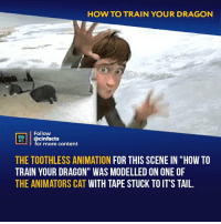 "Facts, Memes, and How To: HOW TO TRAIN YOUR DRAGON  Follow  HEAL  cinfacts  for more content  THE TOOTHLESS ANIMATION FOR THIS SCENE IN ""HOW TO  TRAIN YOUR DRAGON"" WAS MODELLED ON ONE OF  THE ANIMATORS CAT WITH TAPE STUCK TO IT'S TAIL. Wasn't it just that Toothless, in general, was modeled after the cat?⠀ -⠀ Follow @cinfacts for more facts"