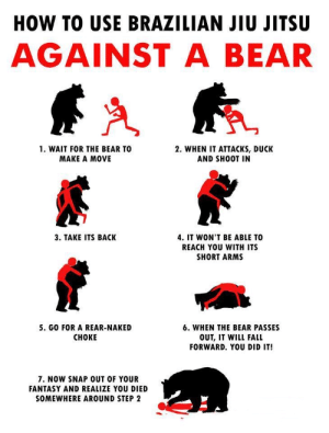 Fall, Bear, and Duck: HOW TO USE BRAZILIAN JIU JITSU  AGAINST A BEAR  1. WAIT FOR THE BEAR TO  MAKE A MOVE  2. WHEN IT ATTACKs, DUCK  AND SHOOT IN  3. TAKE ITS BACK  4. IT WON'T BE ABLE TO  REACH YOU WITH ITS  SHORT ARMS  5. GO FOR A REAR-NAKED  CHOKE  6. WHEN THE BEAR PASSES  OUT, IT WILL FALL  FORWARD. YOU DID IT!  7. NOW SNAP OUT OF YOUR  FANTASY AND REALIZE YOU DIED  SOMEWHERE AROUND STEP 2 This is amazing