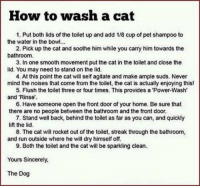 Run, Smooth, and Home: How to wash a cat  1. Put both lids of the toilet up and add 1/8 cup of pet shampoo to  the water in the bowl.  2. Pick up the cat and soothe him while you carry him towards the  bathroomm  3. In one smooth movement put the cat in the toilet and close the  lid. You may need to stand on the lid.  4. At this point the cat will self agitate and make ample suds. Never  mind the noises that come from the toilet, the cat is actually enjoying this!  5. Flush the toilet three or four times. This provides a 'Power-Wash  and 'Rinse'.  6. Have someone open the front door of your home. Be sure that  there are no people between the bathroom and the front door.  7. Stand well back, behind the toilet as far as you can, and quickly  lift the lid.  8. The cat will rocket out of the toilet, streak through the bathroom,  and run outside where he will dry himself off.  9. Both the toilet and the cat will be sparkling clean  Yours Sincerely,  The Dog