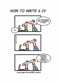 """Memes, How To, and Leverage: HOW TO WRITE A CV  DO You HAVE  ANY EXPERTISE  IN SQL?  NO  r DOESNT  MATTER.  WRITE:  """"EXPERT IN  NO SQL""""  Leverage the NoSQL boom"""
