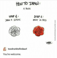 Memes, 🤖, and Red: How TRAN  A ROSE  STEP  A:  STEP  JRAW A LETTUCE  FAINT IN RED  toodrunktofindaurl  You're welcome. you're welcome - lex @lexdreamville