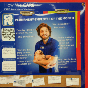 "Funny, Nasa, and Work: How We CARE  CARE Associate of the Month  ca  PERMANENT EMPLOYEE OF THE MONTH  ""He's incredible!""  Everybody  3 a  ""One day I think l'IU  give him my job!  Cut ane  Seluli  CEO of PetSmart  ""Darn, I wish he  worked for us!""  Successes  Adoptbis  Merch Seus  All of our  competitors and  also NASA  ""He's the best  thing to even  happen to this  company!""  - Boss at previous  unrelated job  Current Focu  Why does he keep  ouching the lizards  ke that?""  Customer  sn  nit.chs  Energie For my last day of work at the pet store, I made myself Employee of the Month via /r/funny https://ift.tt/2nJXqka"