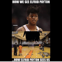 Basketball, Nba, and Sports: HOW WE SEE ELFRID PAYTON  CHBAMEMES  HOW ELFRID PAYTON SEES US Got that tarantula cut😂 nba nbamemes elfridpayton