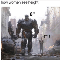 """Funny, Women, and How: how women see height.  5""""11 Goodnight"""
