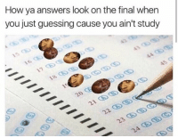 My whole life is a standardized test: How ya answers look on the final when  you just guessing cause you ain't study  AA  24 My whole life is a standardized test