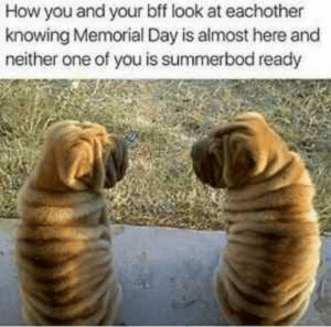 Have An Awesome Memorial Day Weekend - Meme.xyz: How you and your bff look at eachother  knowing Memorial Day is almost here and  neither one of you is summerbod ready Have An Awesome Memorial Day Weekend - Meme.xyz