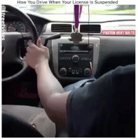 They wild😂😂 - Tag A Friend Drop A Like For More Check Out My Other Posts🔥 Follow 👉 @stonerjoke: How You Drive When Your License Is Suspended  FASTEN SEAT BELTS They wild😂😂 - Tag A Friend Drop A Like For More Check Out My Other Posts🔥 Follow 👉 @stonerjoke