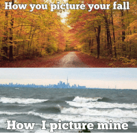Happy first day of fall! Surf season is upon us..... picture by @fellows735 jetski meme fall surf waves: How you picture your fall  How picture mine Happy first day of fall! Surf season is upon us..... picture by @fellows735 jetski meme fall surf waves
