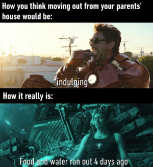 so true by Abduu75 MORE MEMES: How you think moving out from your parents'  house would be:  indulging  How it really is:  Food and water ran out 4 days ago so true by Abduu75 MORE MEMES