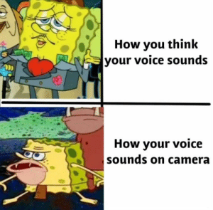 Tumblr, Blog, and Camera: How you think  your voice sounds  How your voice  sounds on camera twitblr:  You feeeeeeel me?