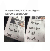 happy new year! - textpost textposts tumblr tumblrtextpost tumblrtextposts tumblrtext tumblrpost tumblrfunny funnytumblr funny meme memes: How you thought 2016 would go vs.  how 2016 actually went  SATURDAY DECEMBER 31, 2016  Turtles  SATURDAY, DECEMBER turn up  31, 2016  turn dead on  up  beaches happy new year! - textpost textposts tumblr tumblrtextpost tumblrtextposts tumblrtext tumblrpost tumblrfunny funnytumblr funny meme memes