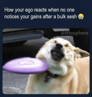 Always: How your ego reacts when no one  notices your gains after a bulk sesh  @liftosphere Always