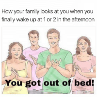 Family, Funny, and How: How your family looks at you when you  finally wake up at 1 or 2 in the afternoon  You got out of bed!