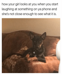 Ass, Homie, and Phone: how your girl looks at you when you start  laughing at something on ya phone and  she's not close enough to see what it is. She Bout To Growl At Yo Ass Homie. 😩😂😂 Relationships