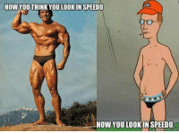 speedo: HOW YOUTHINK YOU LOOK IN SPEEDO  HOW YOU LOOK IN SPEEDO.