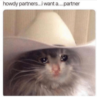 Friends, Memes, and 🤖: howdy partners...i want a....partner tag lonely people or say ur lonely and make friends in the comments ur welcome