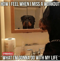 Who am I anymore?: HOWIFEEL WHEN I MISS A WORKOUT  GYMAHOLIC  WHAT ITM GONNA DO WITH MY LIFE Who am I anymore?