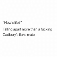 "Fucking, Life, and Memes: ""How's life?""  Falling apart more than a fucking  Cadbury's flake mate @drgrayfang is a must follow"
