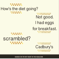 Dieting, Head, and Memes: How's the diet going?  Not good  had eggs  for breakfast.  scrambled?  Cadbury's  SHARED ON I M NOT RIGHT IN THE HEAD.COM Submitted by Robert Borthwick