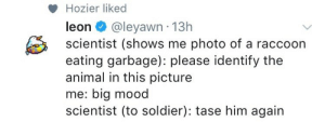 "Mood, Target, and Tumblr: Hozier liked  leon @leyawn 13h  scientist (shows me photo of a raccoon  eating garbage): please identify the  animal in this picture  me: big mood  scientist (to soldier): tase him again frogmp3: ""Hozier liked"""