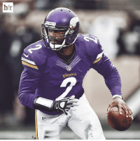 Michael Vick shared an article about how he can lead the Vikings to a Super Bowl. Well, imagine this.: hr  NF  IKinGS Michael Vick shared an article about how he can lead the Vikings to a Super Bowl. Well, imagine this.