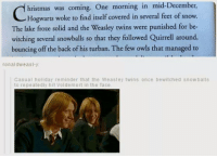 Memes, Twins, and Covers: hristmas was coming. One morning in mid-December  Hogwarts woke to find itself covered in several feet of snow.  The lake froze solid and the Weasley twins were punished for be-  witching several snowballs so that they followed Quirrell around,  bouncing off the back of his turban. The few owls that managed to  ronal dw as  Casual holiday reminder that the Weasley twins once bewitched snowballs  to repeatedly hit Voldemort in the face ~Dobby