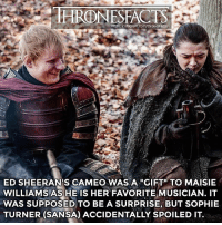"""It was supposed to be a surprise for when Maisie comes to set and sees him, but Sophie Turner didn't know. She told her and spoiled the surprise 😂: HRONESFACTS  ED SHEERAN'S CAMEO WAS A """"GIFT"""" TO MAISIE  WILLIAMS AS HE IS HER FAVORITE MUSICIAN. IT  WAS SUPPOSED TO BE A SURPRISE, BUT SOPHIE  TURNER (SANSA) ACCIDENTALLY SPOILED IT. It was supposed to be a surprise for when Maisie comes to set and sees him, but Sophie Turner didn't know. She told her and spoiled the surprise 😂"""