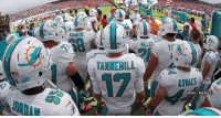 BREAKING: Miami Dolphins agree to trade their entire remaining roster for 2029 7th-round draft pick https://t.co/uXOsiBTwn1: hs  MIAMI  TANNEHILL  AOVACS  @NFL MEMES BREAKING: Miami Dolphins agree to trade their entire remaining roster for 2029 7th-round draft pick https://t.co/uXOsiBTwn1