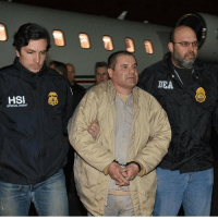 Memes, 🤖, and Charge: HSI  SPECIAL AGENT  ICA  US Drug lord ' ElChapo' Guzman arrives in New York to face charges! WSHH