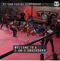 When one vs. one MMA isn't enough, Team Fighting Championship takes it to the extreme 👀: HTT TEAM FIGHTING CHAM  amt fight com  REFEREE  WELCOME TO A  5 O N 5 S MACK D O W N When one vs. one MMA isn't enough, Team Fighting Championship takes it to the extreme 👀