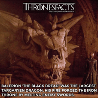 Do you think Cersei might kill one of Dany's dragons?: http://instagram.com/thronesfacts/  BALERION 'THE BLACK DREAD WAS THE LARGEST  TARGARYEN DRAGON. HIS FIRE FORGED THE IRON  THRONE BY MELTING ENEMY SWORDS Do you think Cersei might kill one of Dany's dragons?