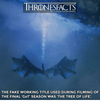 💢 Which has been your favorite GoT episode ever❓: http://instagram.com/thronesfacts/  THE FAKE WORKING TITLE USED DURING FILMING OF  THE FINAL 'GoT' SEASON WAS 'THE TREE OF LIFE' 💢 Which has been your favorite GoT episode ever❓