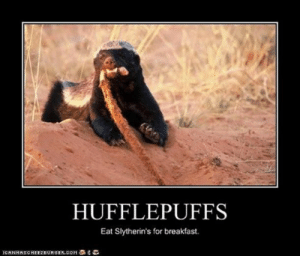 """Memes, Breakfast, and Quotes: HUFFLEPUFFS  Eat Slytherin's for breakfast.  ICANHASONEEZEURGER.COM亭名ら """"Hufflepuffseat Slytherins for breakfast.""""—Unknown #harrypotter #harrypotterquotes #quotes #memes"""