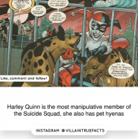 Huh, Memes, and Suicide Squad: HUH? WHO SAID  WERE AT THE  ANYTHING ABOUT  FREAKIN'  THE VOKEP?  HOWS  THIS  GONNA GET  WERE  FREEING  HARLEYS PET  DID YOH  MISS ME, BABIES?  HARLEY MISSED HER  SCREWBALL.  YES SHE DID!  Like, comment and follow!  Harley Quinn is the most manipulative member of  the Suicide Squad, she also has pet hyenas  IN STAG RAM O VILLAINTRUEFACTS dccomics harleyquinn geek picoftheday