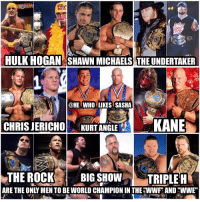 Hulk Hogan, Memes, and The Rock: HULK HOGAN SHAWN MICHAELS THEUNDERTAKER  @HE WHO LIKES SASHA  CHRIS JERICHO  KURT ANGLE  KANE  THE ROCK  BIG SHOW  TRIPLE H Thought this was an interesting fact these 9 are the only men to be world champ in the company when it was called the WWF and again during present time under the WWE name. All of them are living legends btw👌. wwe wwememe wwememes hulkhogan shawnmichaels undertaker theundertaker chrisjericho kurtangle kane therock bigshow tripleh wrestler wrestling prowrestling professionalwrestling worldwrestlingentertainment wweuniverse wwenetwork wwesuperstars raw smackdown wwf worldwrestlingfederation nxt wwenxt sdlive smackdownlive wwelegends