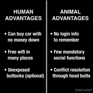 Overall advantage: animals: HUMAN  ADVANTAGESADVANTAGES  ANIMAL  Can buy car withNo login info  no money down  to remember  Few mandatory  social functions  . Free wifi in  many places  . Unexposed  Conflict resolution  buttocks (optional)through head butts  adult swim] Overall advantage: animals