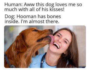 Aww, Bones, and Good: Human: Aww this dog loves me so  much with all of his kisses!  Dog: Hooman has bones  inside. I'm almost there. Finally some good snacc